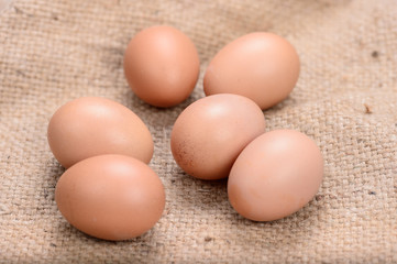 fresh chicken eggs on wood table