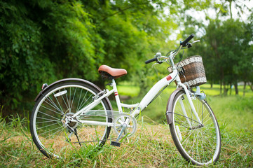 Vintage Bicycle with be fresh field