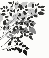 Beautiful Tree Silhouette on a White Background Vector Illustrat
