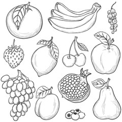 Sketched fruits