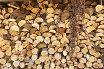 Poster Firewood texture Background of stacked wood. Ready firewood. Various kinds of wooden logs stacked on top of each other. Stack of wood, firewood, background. Dry chopped firewood logs ready for winter.