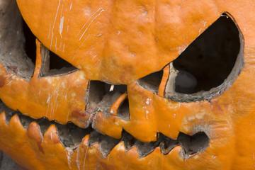 Rotten Halloween Pumpkin