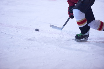 ice hockey player in action