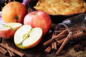 Apple pie ingredients - fresh apples, cinnamon sticks and sugar - on dark rustic wooden background