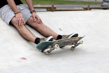 Skateboard and skatepark