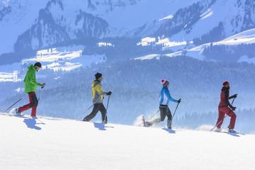 Schneeschuh-Wanderung im Gebirge