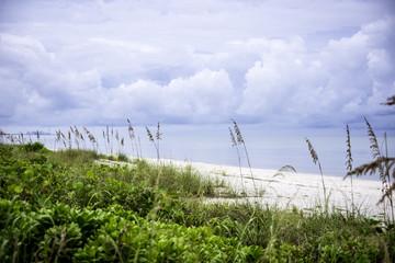 Beach in Bonita Springs, Florida