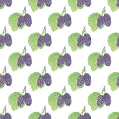 Mulberries. Seamless pattern with berries. Hand-drawn background