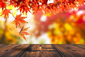 Autumn Leaf With Wood Table