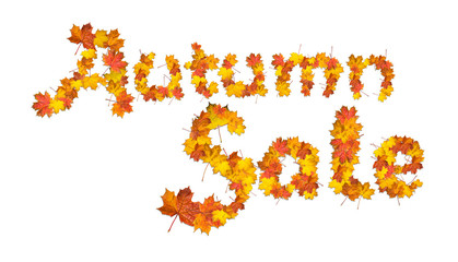 Words Autumn sale made of bright maple leaves