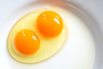 Raw two-yolk egg on the plate