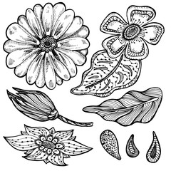 hand drawn set of absract doodle flowers