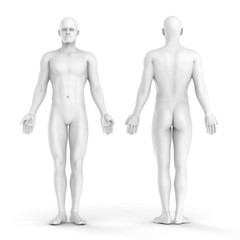 3d white man - front and back view