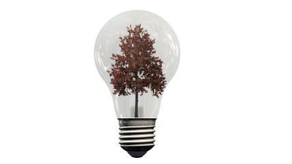 Tree in a light bulb - Energy saving - solaoted on white