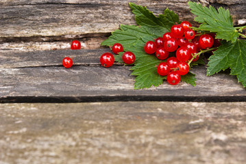 fresh red currants on wooden background