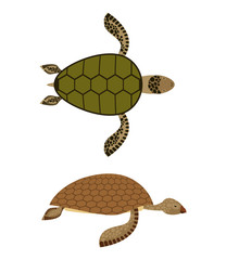 set Water turtle. Side view and top view. Deep-sea animals. Mari