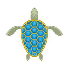 Water turtle Sapphire carapace. Marine animal with precious ston