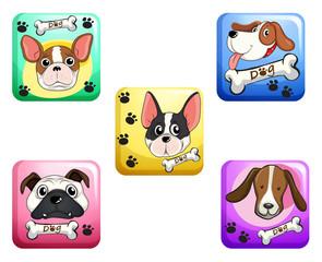 Dog on square badges