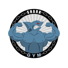 Angry strong shark. Shark bodybuilder with big biceps. Emblem fo