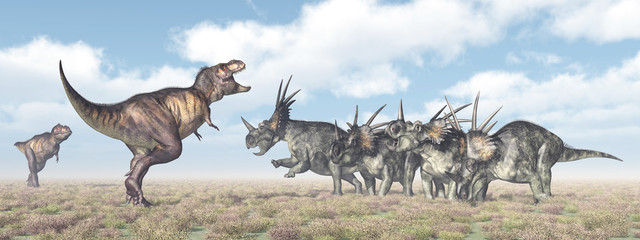 Tyrannosaurus Rex and Styracosaurus