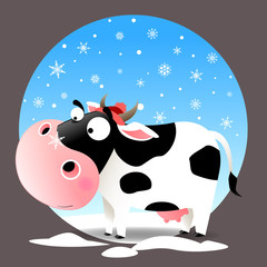 Cow in snow with snowflake on nose