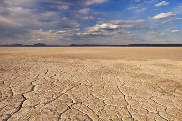 Cracked earth in remote Alvord Desert, Oregon, USA