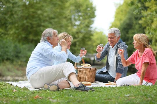 Group of senior people enjoying picnic on sunny day