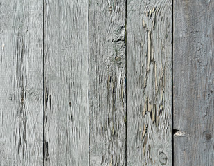 Old blue painted fence from chipboard.