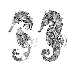 Seahorse graphic patterns. Abstract illustrations.