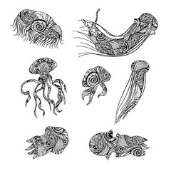Jellyfish graphic patterns. Abstract illustrations.