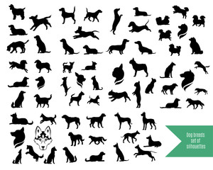 The big set of dog breeds silhouettes