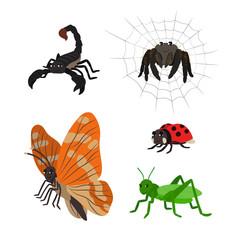 Cartoon set: scorpion spider butterfly ladybug grasshopper