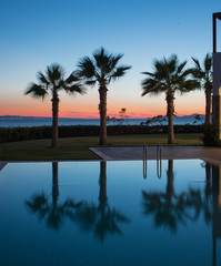 Palm trees and the pool during sunset