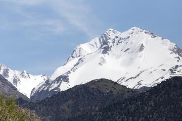 the snowy peaks of the Tien Shan Mountains. Kazakhstan