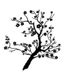 twig plum mei blossoms