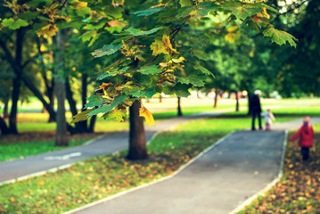 Young mother and her little daughter walking in the autumn park