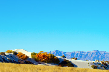 Blue sky, mountains, and autumn colors at White Sands National Monument in New Mexico