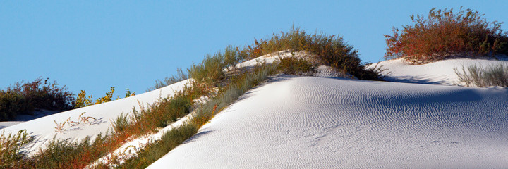 Panorama of colors and shapes in White Sands National Monument in New Mexico