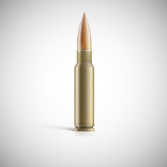 Single bullet. Cartridge for rifle or AK 47