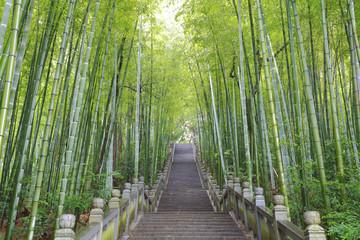 Schilderachtige trap voor bergbeklimmers naast het bamboebos