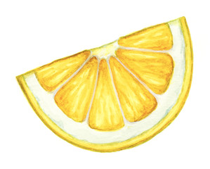 Watercolor lemon slice isolated on white background. Hand painted clip art illustration.