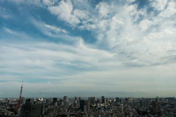 東京タワーと街並の俯瞰風景