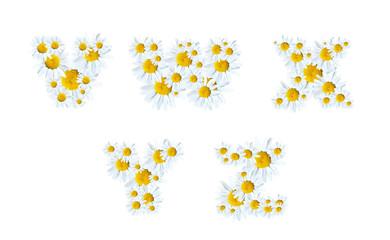 Alphabet of Marguerites
