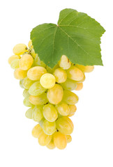 White grape cluster with leaf