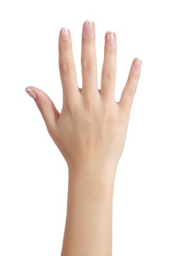 Woman open hand with french manicure
