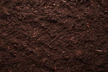 Fototapeta Soil obraz