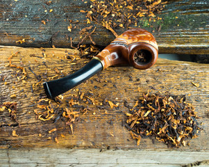 Pipe smoking is on the cracked, dried-up tree