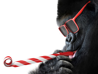 Funny gorilla with red sunglasses celebrating a party by blowing a striped horn
