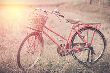 Vintage Bicycle with Summer grassfield ; vintage filtered tone s