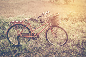beautiful landscape image with red vintage bicycle at grass fiel